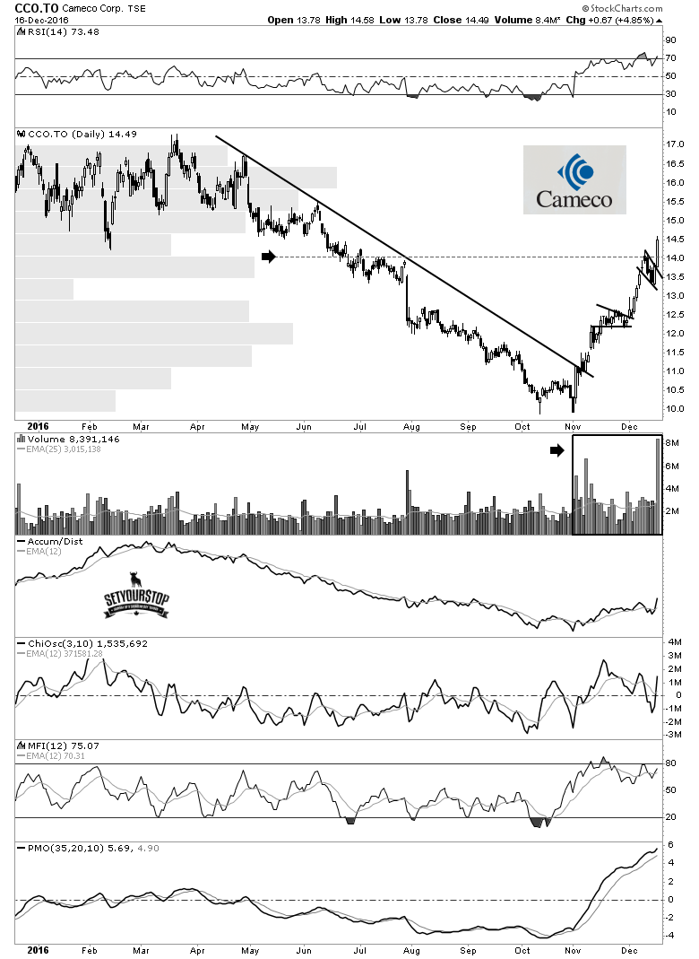 cameco-daily